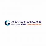 Autoforjas